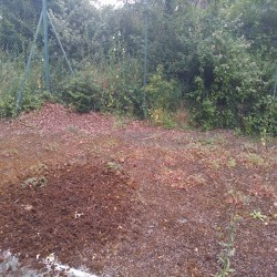 Tennis Court Maintenance in Aspull Common 5